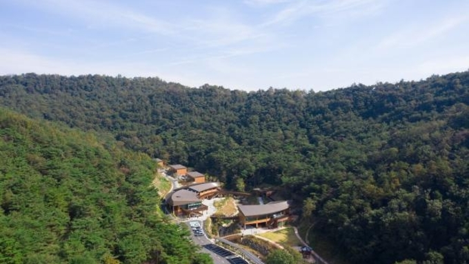(광주일보) 나주숲체원서 초록샤워···월출산 기찬묏길서 원기충전